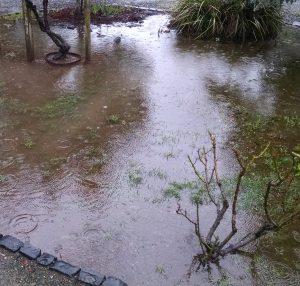 sonoma rain 3